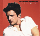 First Listen: Brandon Flowers – Can't Deny My Love
